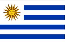Bandeira Do Uruguai Cores Significados Historia